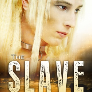 LGBT Bestseller THE SLAVE is Free!
